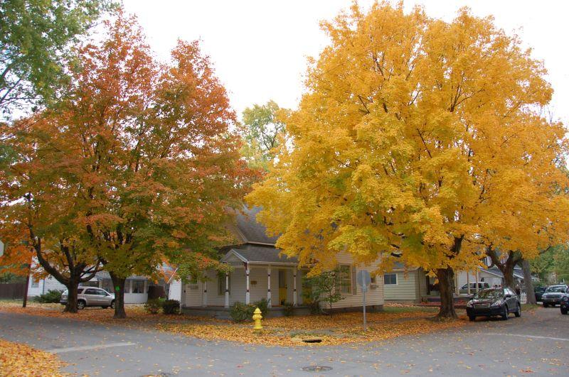 Cottage Blog 2 Post36