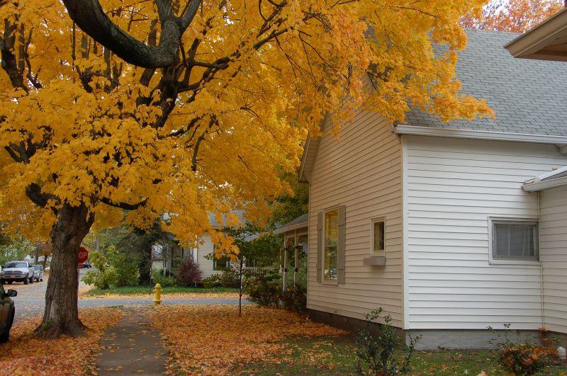 Cottage Blog 2 Post42