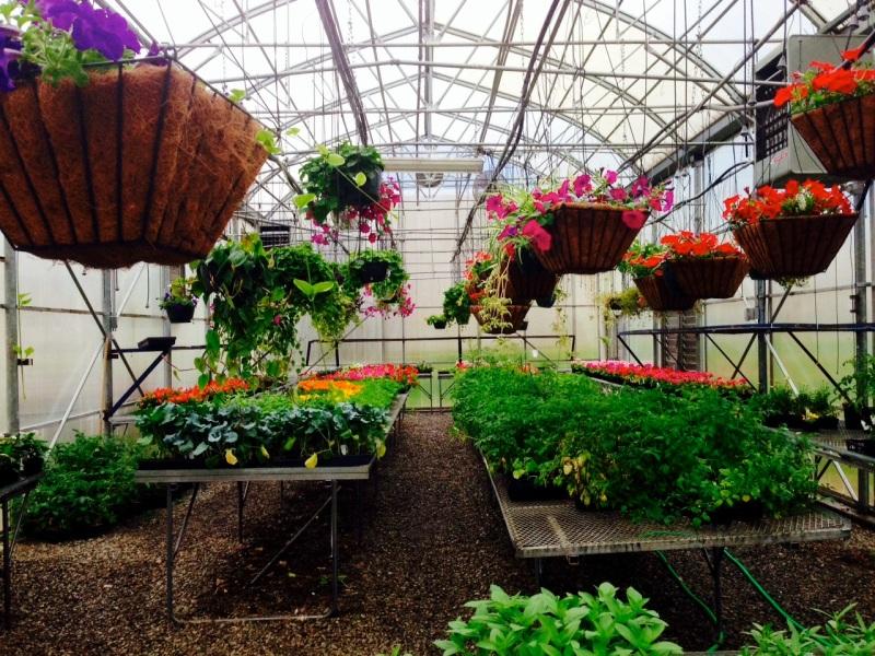 Garden for Blog05