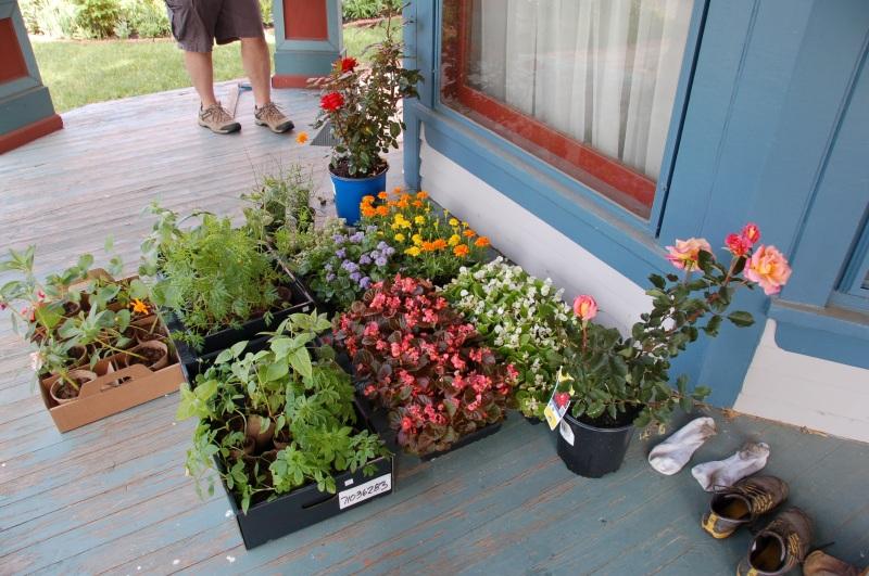 Garden for Blog06