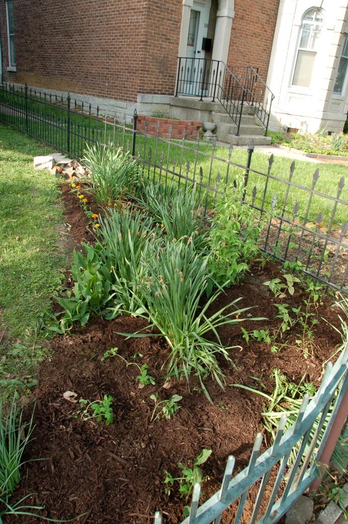 Garden for Blog24
